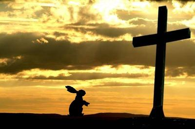 bunny-cross